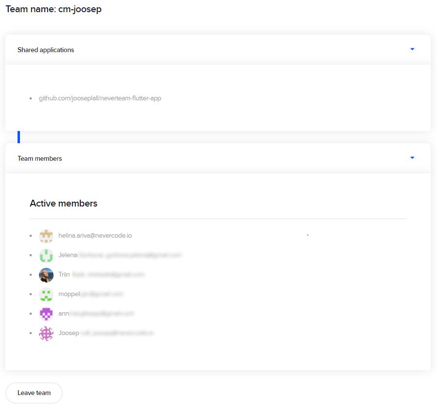 Team member's view of team settings.